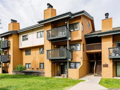 Steamboat Springs CO Condo/Townhouse Active: $255,000