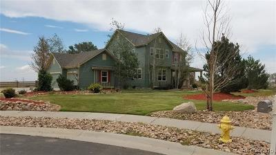 Castle Rock CO Single Family Home Active: $845,000