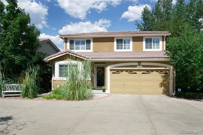 Highlands Ranch Single Family Home Active: 1537 Laurenwood Way