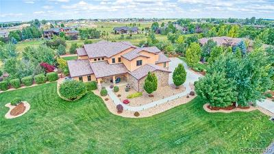 Longmont Single Family Home Active: 8712 Portico Lane