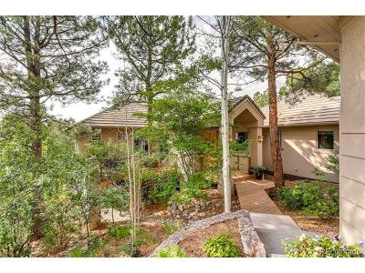 Castle Rock Single Family Home Active: 256 Lead Queen Drive