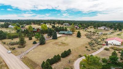Franktown Single Family Home Active: 7676 Pine Ridge Road
