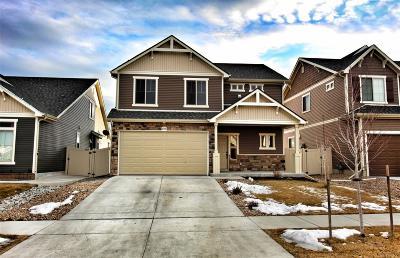 Denver Single Family Home Active: 18158 East 44th Avenue
