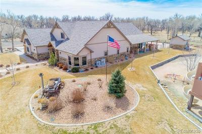 Kersey Single Family Home Active: 26500 County Road 388