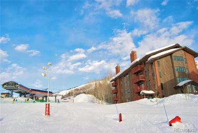 Steamboat Springs Condo/Townhouse Active: 2430 Ski Trail Lane #401