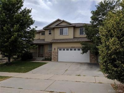 Evans Single Family Home Under Contract: 3319 Syrah Street