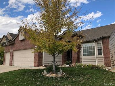 Longmont Single Family Home Active: 1622 Goshawk Drive