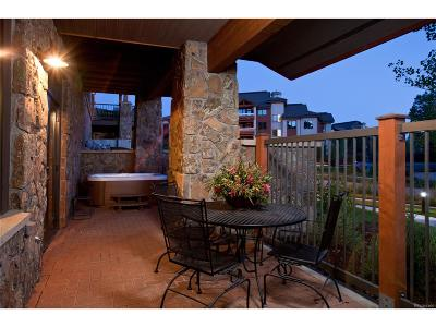 Steamboat Springs Condo/Townhouse Under Contract: 1800 Medicine Springs Drive #5114