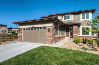 Arvada Single Family Home Active: 9507 Juniper Way