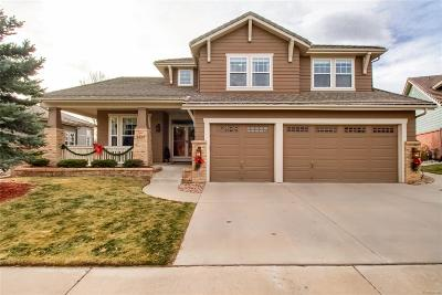 Douglas County Single Family Home Active: 8819 Greensborough Place