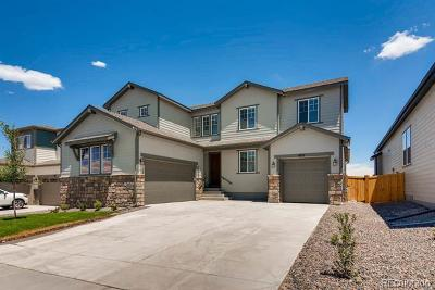 Castle Rock Single Family Home Active: 4831 Coulee Trail