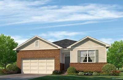 Thornton Single Family Home Active: 13662 Valentia Street