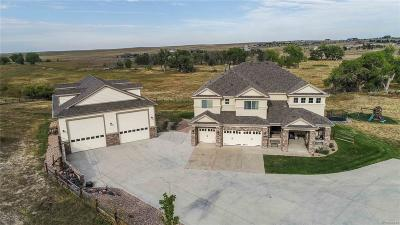 Parker CO Single Family Home Active: $1,095,000
