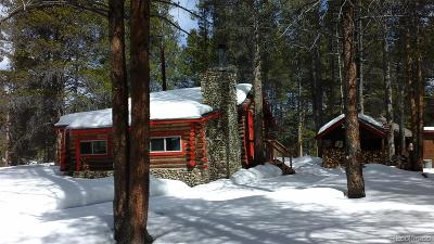 Leadville Single Family Home Under Contract: 649 County Rd #21 #3