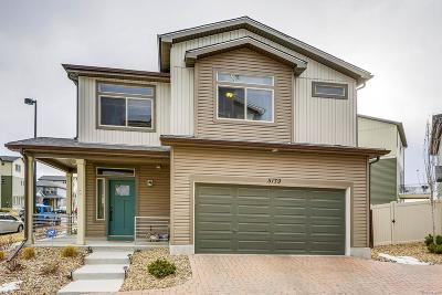 Denver Single Family Home Active: 5179 Andes Street