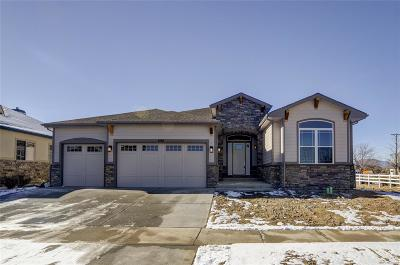 Arvada Single Family Home Under Contract: 8181 Ward Road