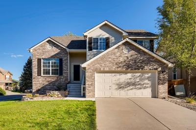 Southridge Single Family Home Under Contract: 317 Wessex Circle