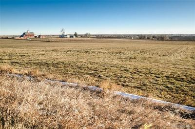 Weld County Residential Lots & Land Active: County Road 23