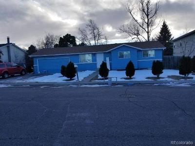 Littleton Single Family Home Active: 236 Dianna Drive