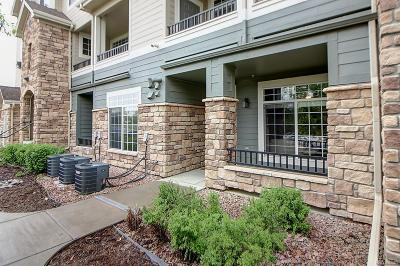 Castle Rock Condo/Townhouse Under Contract: 431 Black Feather Loop #807