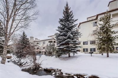Steamboat Springs CO Condo/Townhouse Under Contract: $299,000