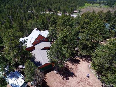 Allenspark Single Family Home Active: 12925 State Highway 7