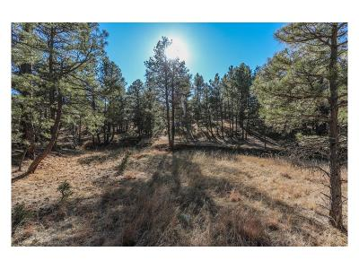 Elbert County Residential Lots & Land Active: 40414 Topaz Drive