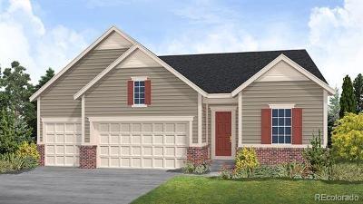 Parker Single Family Home Active: 11677 Jacobsen Street