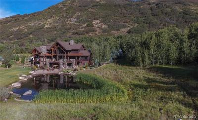 Steamboat Springs Single Family Home Active: 2890 Bucks Path
