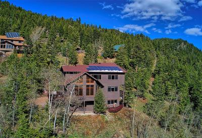 Evergreen Single Family Home Under Contract: 20 Aspen Circle