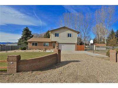 Longmont Single Family Home Active: 12649 Woodland Drive