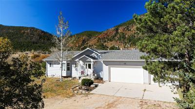 Palmer Lake Single Family Home Under Contract: 151 Colorado Springs Circle