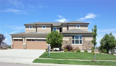 Southshore Single Family Home Active: 27473 East Euclid Drive