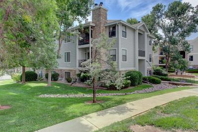 Littleton Condo/Townhouse Active: 6765 South Field Street #7-713