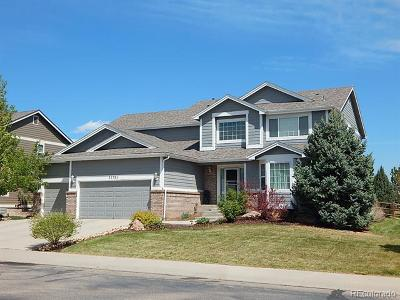 Longmont Single Family Home Active: 11781 Pleasant View Ridge