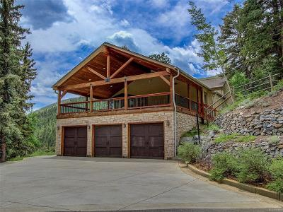 Evergreen Single Family Home Active: 3525 Witter Gulch Road