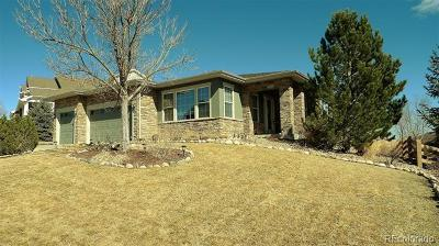 Douglas County Single Family Home Active: 5567 Sawdust Loop
