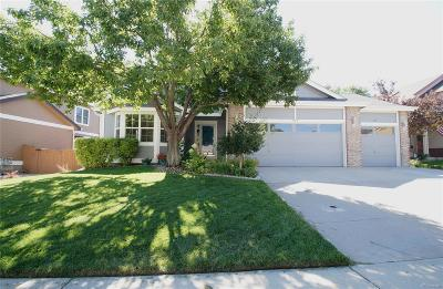 Highlands Ranch Single Family Home Under Contract: 10218 Song Sparrow Lane