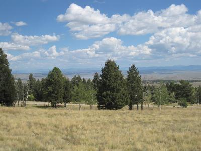 Park County Residential Lots & Land Active: 1457 Pitchfork Road