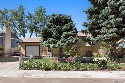 Colorado Springs Single Family Home Under Contract: 6935 Defoe Avenue