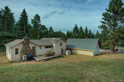 Evergreen Single Family Home Under Contract: 4996 Camel Heights Road