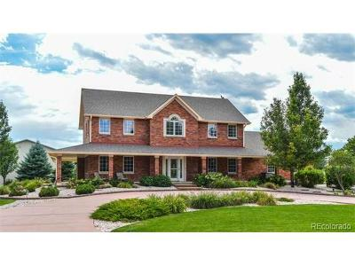 Mead Single Family Home Active: 3796 Singletree Court
