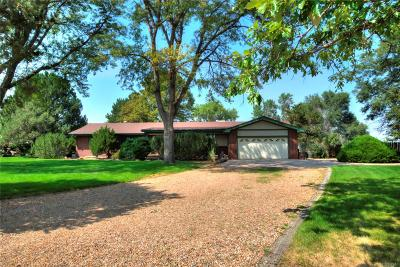 Brighton Single Family Home Active: 14505 Country Hills Drive
