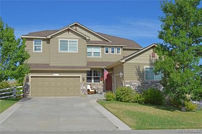 Castle Rock Single Family Home Active: 4071 County View Way