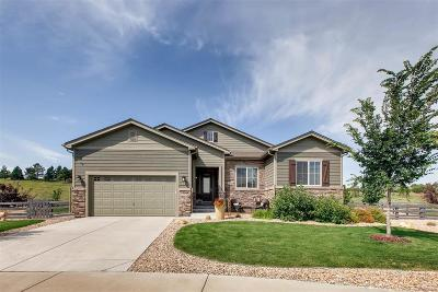 Castle Rock Single Family Home Active: 2745 Russet Sky Court
