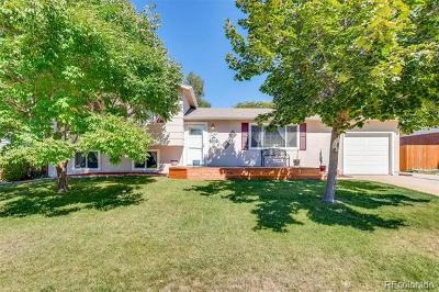 Centennial Single Family Home Active: 7146 South Franklin Street