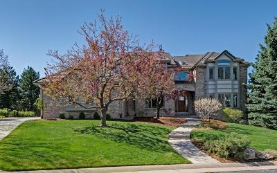 Highlands Ranch Single Family Home Under Contract: 85 Falcon Hills Drive