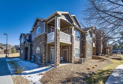 Englewood Condo/Townhouse Under Contract: 7440 South Blackhawk Street #14202