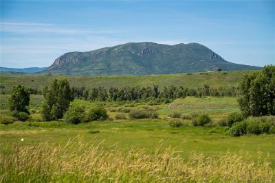 Steamboat Springs Residential Lots & Land Active: Tbd Cc Way
