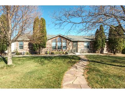Milliken Single Family Home Under Contract: 421 Bobcat Drive